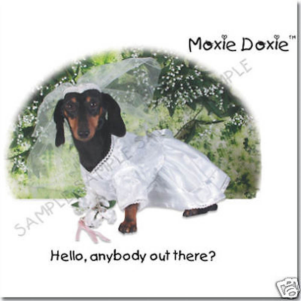Moxie Doxie Very Unique Dachshund Greeting Cards Set 3 999