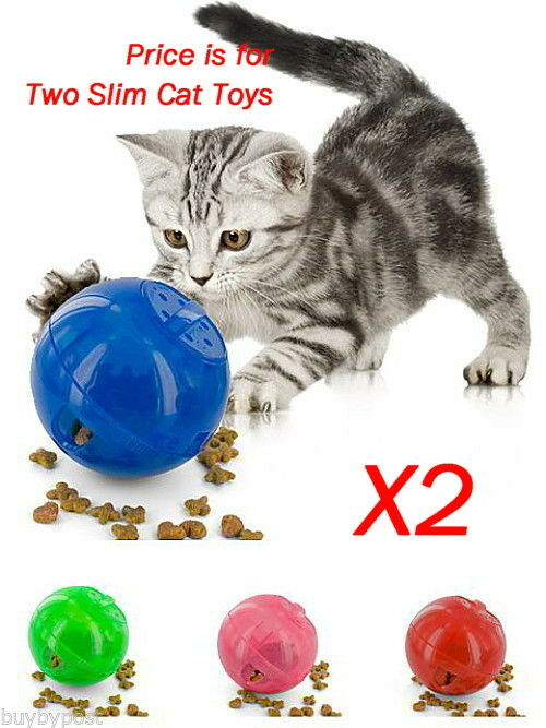 X2 Fat Cat Treat Play Toys Help Keep Your Cat Active & Well 2 Supplied