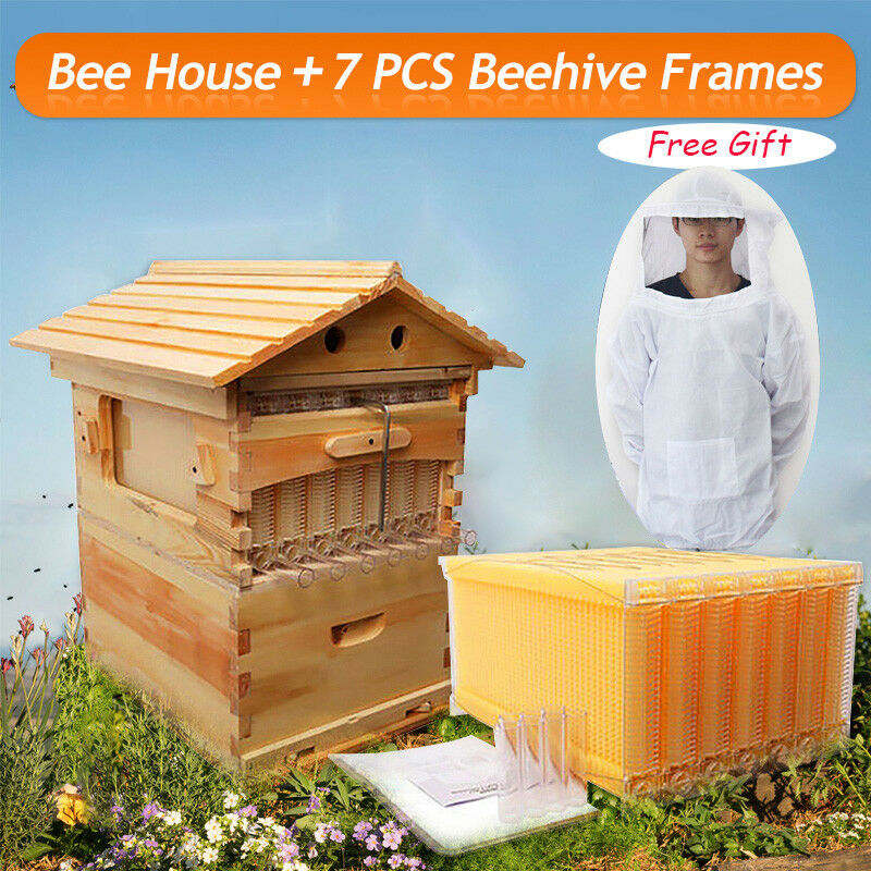 7pcs upgraded auto flow honey hive beehive frames beekeeping super brood box cad. Black Bedroom Furniture Sets. Home Design Ideas