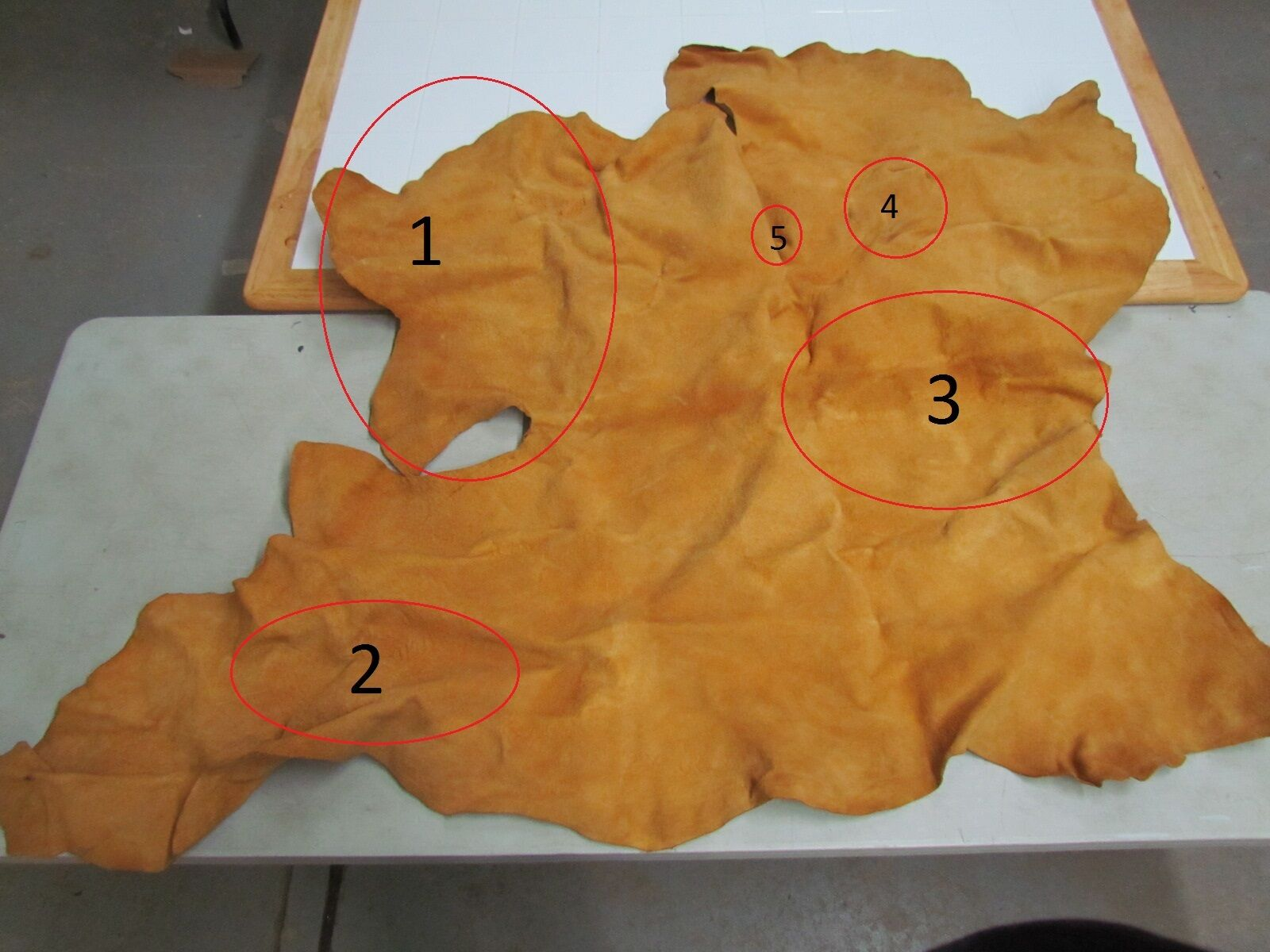 """56""""x 40&1/2"""" Native American Tanned Hide Commercial Way"""