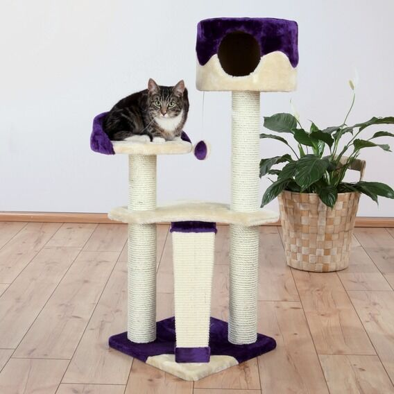 NEW Carla Cat Furniture Tree With Cave Purple Cream 44831