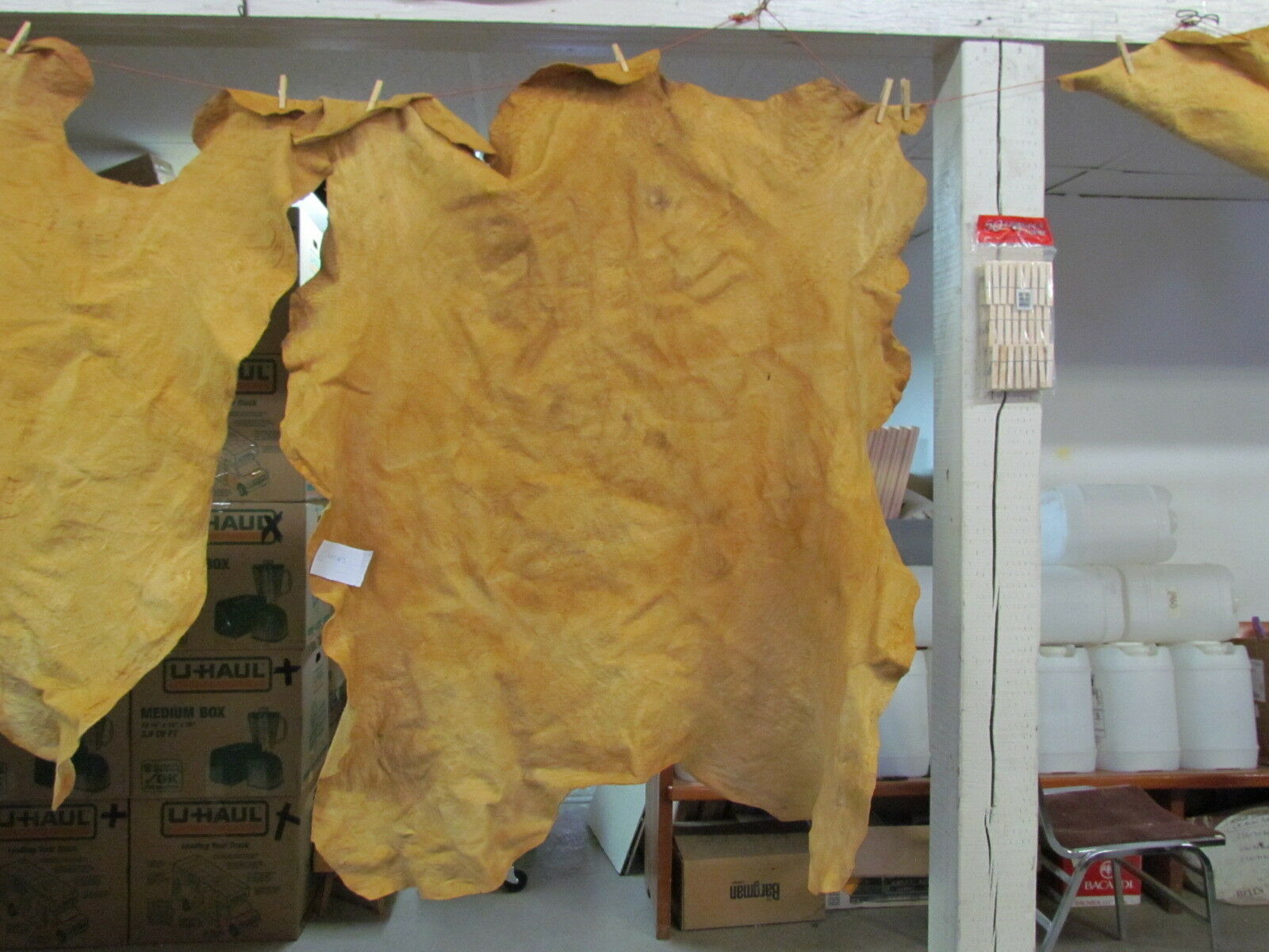 """Native American Light Color Home Tanned Moose Hide 43"""" By 55"""" Irregular Shaped"""