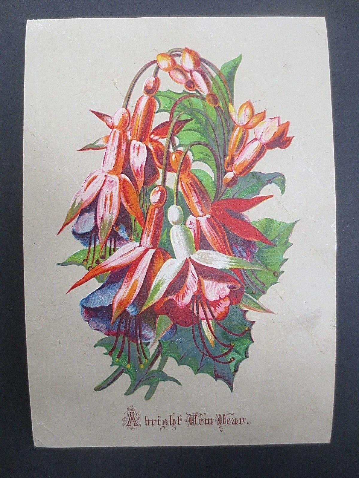 Antique New Year Greetings Card Spray Of Fuschia Flowers Victorian