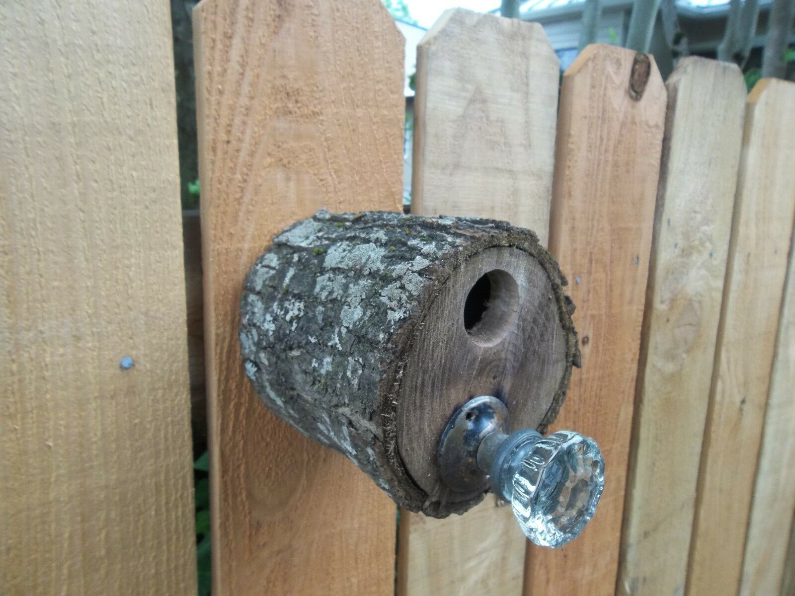 New Hand Made Rustic Black Walnut Wood Bird House with Antique Crystal Doorknob