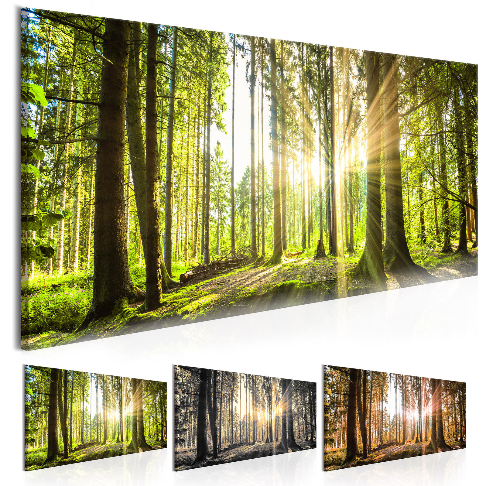 wandbilder wald landschaft leinwand bilder xxl ausblick kunstdruck c b 0077 b b eur 22 90. Black Bedroom Furniture Sets. Home Design Ideas