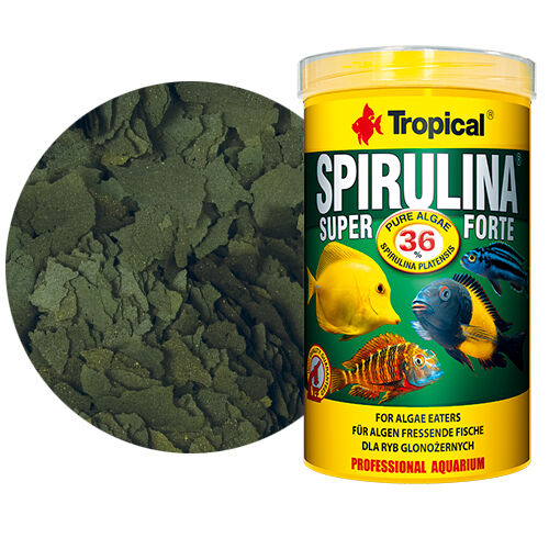 TROPICAL SPIRULINA Vegetable food in the form of flakes TROPICAL FISH FOOD