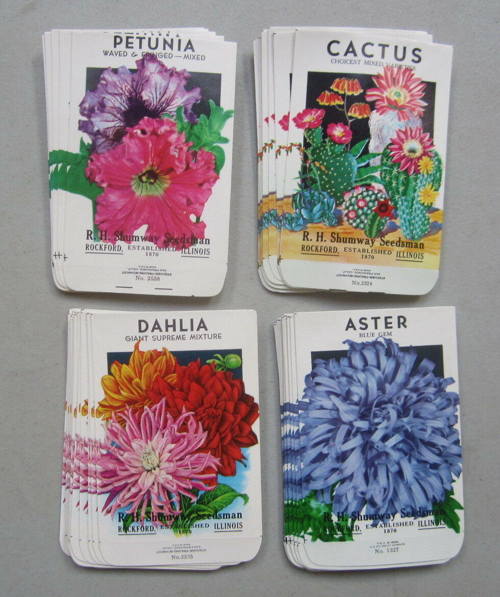 Lot of  100 Old Vintage FLOWER SEED PACKETS - Dahlia Aster Petunia Cactus EMPTY