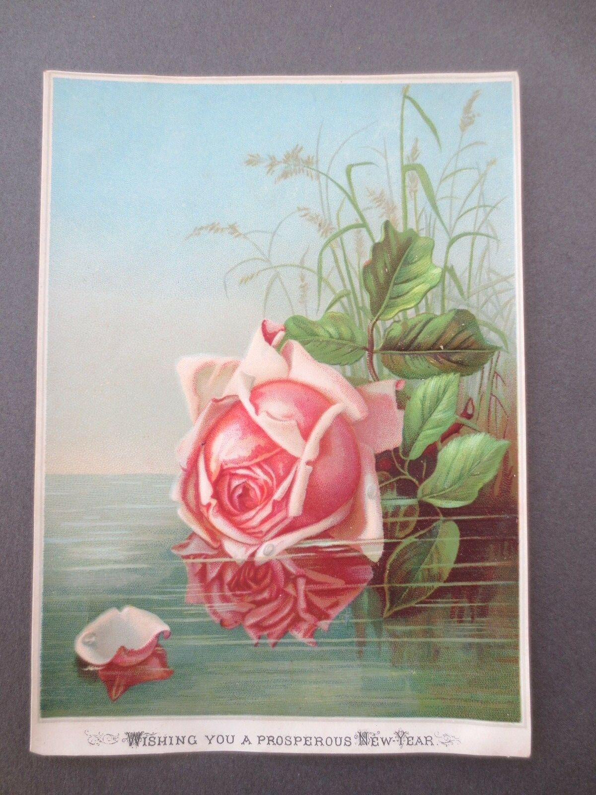 antique new year card pink rose embossed on water ferns 1881 victorian chromo 1 of 2only 1 available