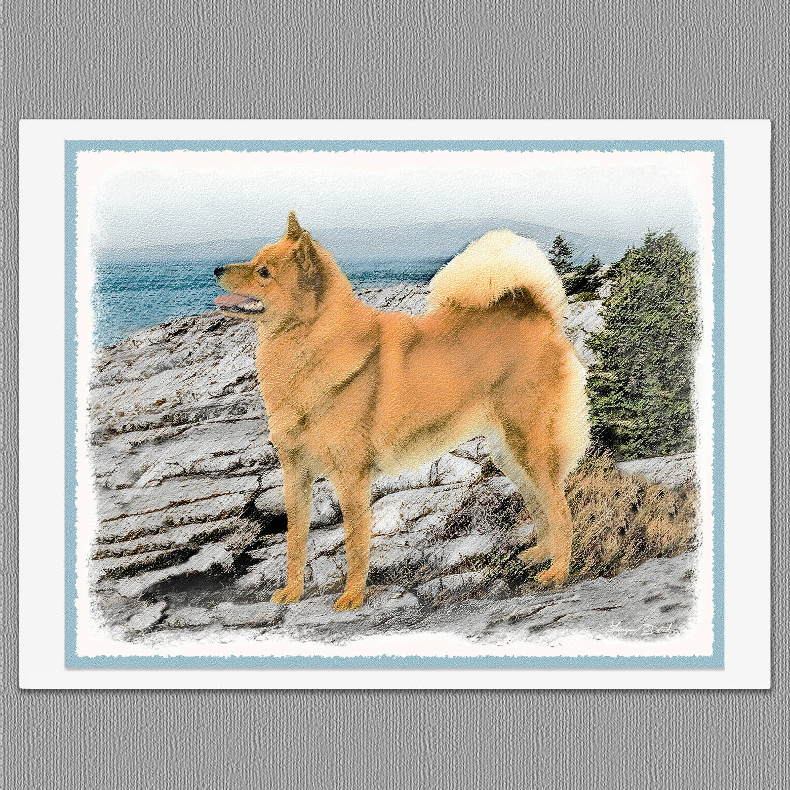 6 finnish spitz dog blank art note greeting cards 1299 picclick 6 finnish spitz dog blank art note greeting cards 1 of 3free shipping m4hsunfo