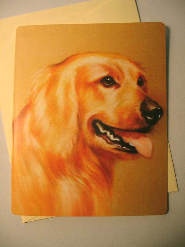 Golden retriever greeting card blank note card sku 005 249 golden retriever greeting card blank note card sku 005 1 of 1free shipping m4hsunfo