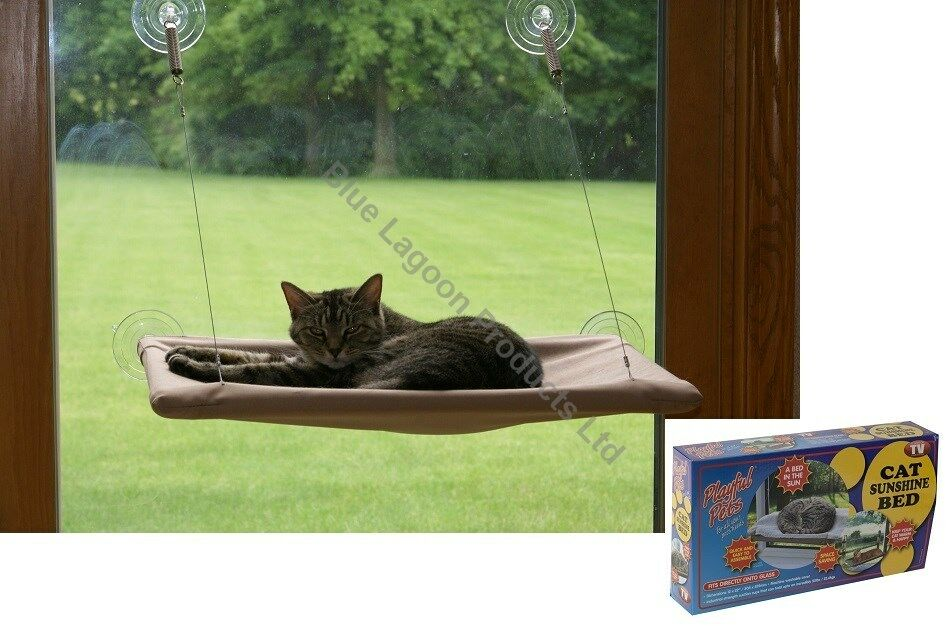 Cat Window Mounted Sunshine Bed Pet Wall Pet Home Suction Cups Conservatory