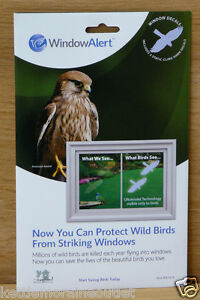 Window Alert Transparent Hawk Decals Prevent Window Strikes - Window alert decals for birds