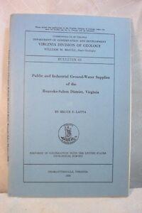 old-book-VIRGINIA-DIVISION-OF-GEOLOGY-ROANOKE-SALEM