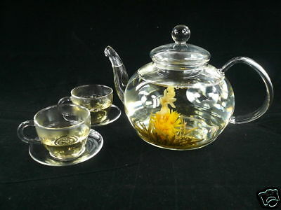 Glass Teapot + Teacups +  12 Blooming Flowering Tea