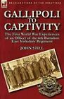 Gallipoli to Captivity: The First World War Experiences of an Officer of the 6th Battalion East Yorkshire Regiment by John Still (Paperback / softback, 2011)