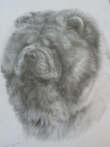 Chow-Chow-Print-Mike-Sibley-Open-Edition