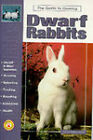 Guide to Owning Dwarf Rabbits by Dennis Kelsey-Wood (Paperback, 1997)