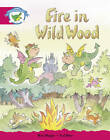 Literacy Edition Storyworlds Stage 5, Fantasy World, Fire in Wild Wood by Pearson Education Limited (Paperback, 1998)