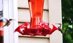 Hummingbird-Bird-Digital-Print-Wings-Nectar-Feeder-custom-Silk-Flower-arrg