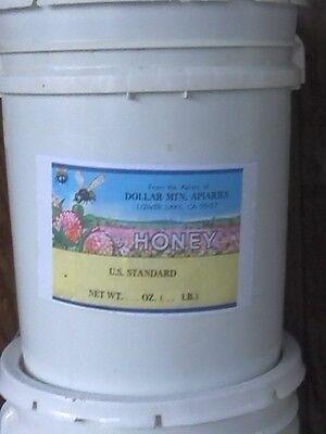 42 lbs of bulk strained NON GMO honey