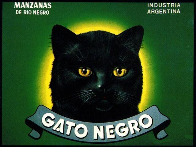 Argentina Gato Negro Black Cat Halloween Apple Fruit Crate Label Art Print