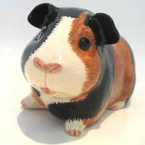 New-Quail-Guinea-Pig-Piggy-Bank-Money-Box-Gift-Multi-Coloured
