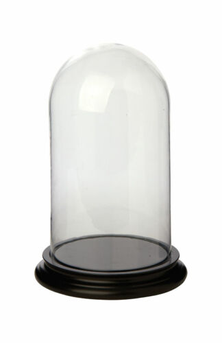 Vintage Medium Glass Dome Bell Jar With Wooden Base
