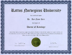Doctor Ratology Novelty Diploma Gag Gift white Rat Rats