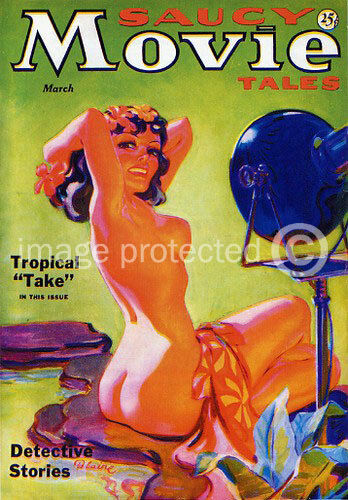 Saucy Movie Tales Vintage Pinup Girl Art Poster -24x36