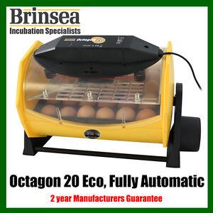 NEW-Brinsea-OCTAGON-20-ECO-Fully-Automatic-Incubator