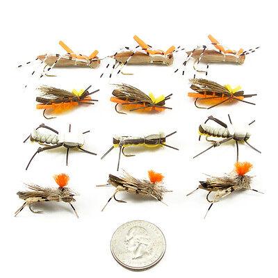 Foam Body Grasshopper Trout Flies Assortment 12 Flies 4 Patterns Dropper Hopper