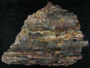 1 Lb 7 Oz Black Tourmaline Mica Crystal Specimen Gem