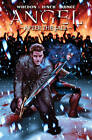 Angel: After the Fall: Volume 3 by Brian Lynch, Joss Whedon (Paperback, 2011)
