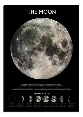 The Moon Phases Large Wall Poster New Sealed