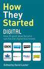 How They Started Digital by Carol Tice, David Lester (Paperback, 2012)