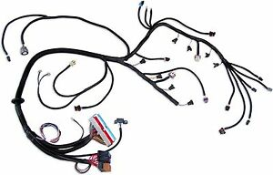 172240012654 in addition 4 6 Standalone Wiring Harness besides Standalone Wiring Harnesses additionally Ls1 Wiring Harness Labeled besides Universal Ls1 Wiring Harness. on standalone ls harness