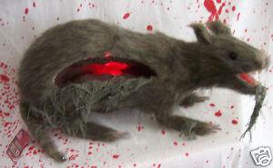 Jumbo-Gutted-Rat-Halloween-Prop-Decoration-Mice-Lights