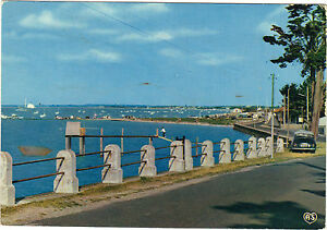 17-cpsm-PORT-DES-BARQUES-Avenue-de-l-039-Ile-Madame