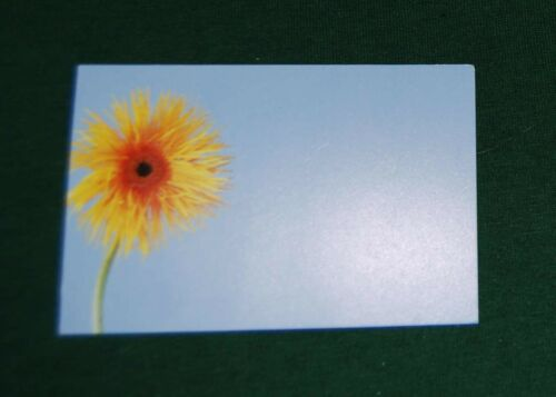 Florist or Gift Cards for Flowers or Gifts 60mm x 90mm Choose Qty