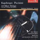 14 Silver Strings (2003)