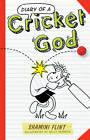 Diary of a Cricket God by Shamini Flint (Paperback, 2012)