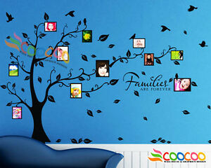 Wall-Decal-Sticker-Removable-Photo-Frame-Tree-With-Family-Quote-39-034-H-x-80-034-W