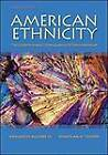 American Ethnicity: The Dynamics and Consequences of Discrimination by Jonathan H. Turner, Adalberto Aguirre (Paperback, 2010)