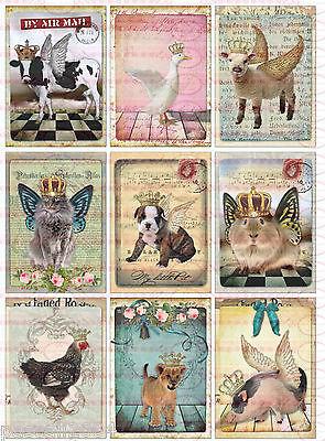 Shabby Vintage  French Tiere  Bügelbilder   NO. 708