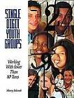 Single-digit Youth Groups: Working with Fewer Than Ten Teens by Marcey Balcomb (Paperback, 2004)