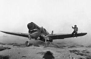 WW2-Photo-RAF-P-40-Libya-1942-WWII-UK