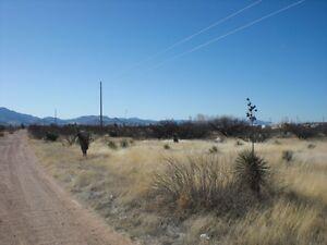 SOUTHERN-ARIZONA-PREMIUM-2-5-AC-POWER-ON-THE-LOT-VINEYARDS-HORSES-NICE