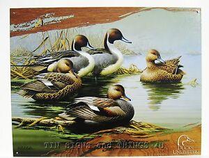 Http Www Ebay Com Itm Morning Most Tin Sign Duck Unlimited Wildlife Outdoor Metal Print Decor Art 1653 290888329152