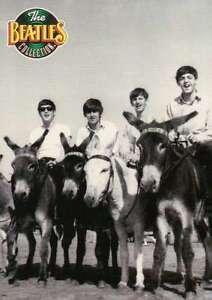 John-George-Ringo-and-Paul-Riding-Donkeys-July-1963-Beatles-Trading-Card