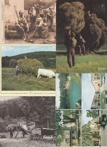 AGRICULTURE FARMERS FARMING France 46 Vintage Postcards pre-1970